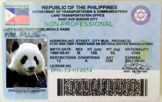 菲律宾驾驶证