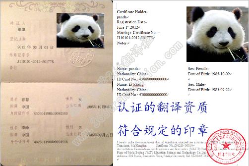 中国结婚证翻译盖章