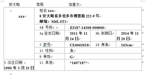 国外驾照翻译模板