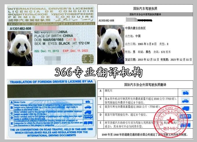 国际驾照翻译模板,国际驾照翻译盖章