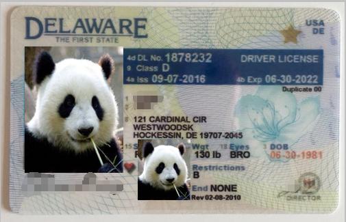 美国特拉华驾照