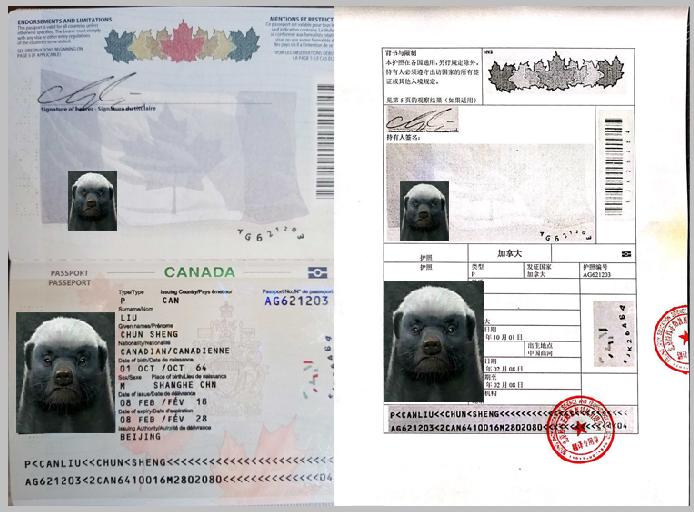 加拿大护照翻译