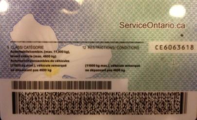 国外驾照换国内驾照翻译模板